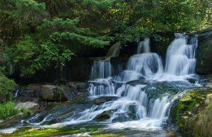 Alsea Falls Oregon